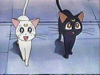 Artemis and luna
