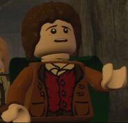 LLOTR Frodo 2