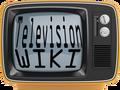 Television Wiki