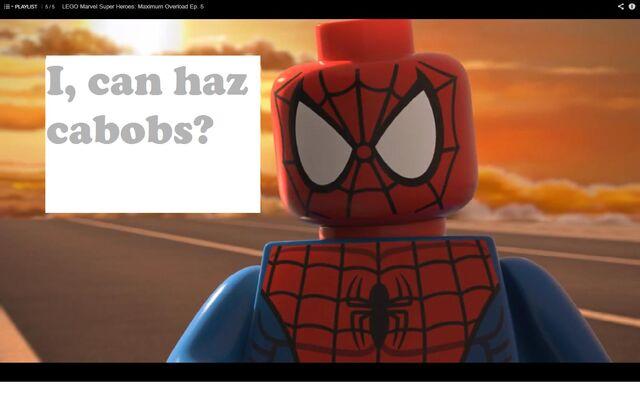 File:I can haz cabobs.jpg