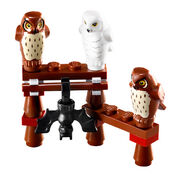 Owl stand