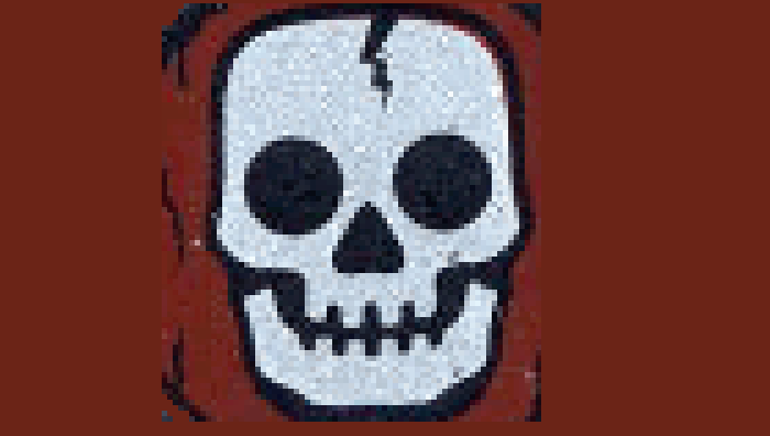 Skele shield