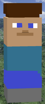 Steve 2