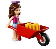 Hay in a wheelbarrow
