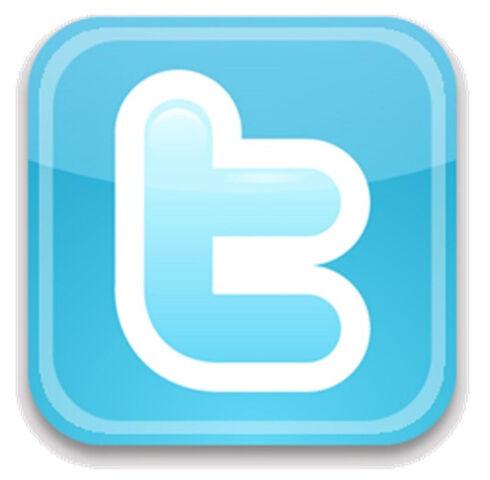 File:Twitter-Logo.jpg