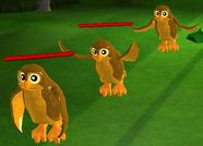 Assembly Owls