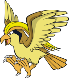 018 Pidgeot DW Shiny