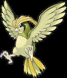 017 Pidgeotto Shiny