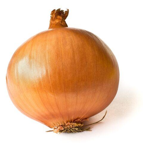 File:1024px-Onion on White.jpg