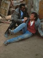 Riggs and Murtaugh 2