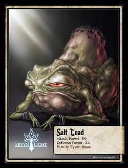 Salt Toad