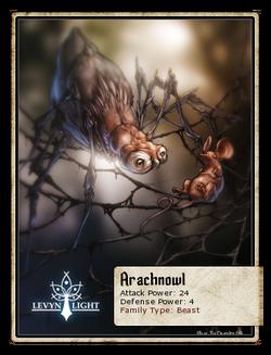 Arachnowl