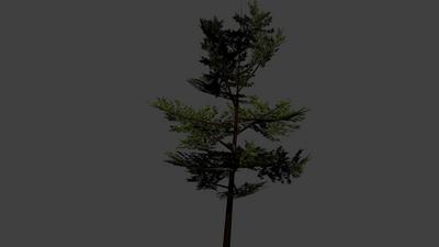 TreeTest1