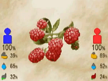 File:Raspberry.png
