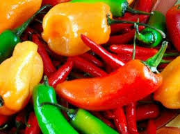 File:Hotpeppers.jpg