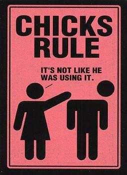 File:Chicks rule misandry.jpg