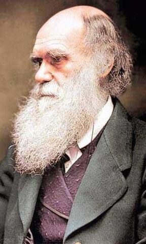 File:Darwin.jpg