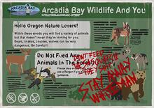 Arcadia Bay Wildlife Poster