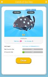 Hail Piranha