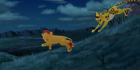 Kion/Gallery/Too Many Termites