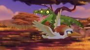 Let-sleeping-crocs-lie (354)