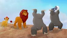 The-lost-gorillas (137)