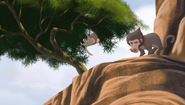 Baboons (443)
