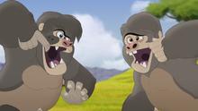 The-lost-gorillas (86)