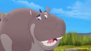 Follow-that-hippo (171)