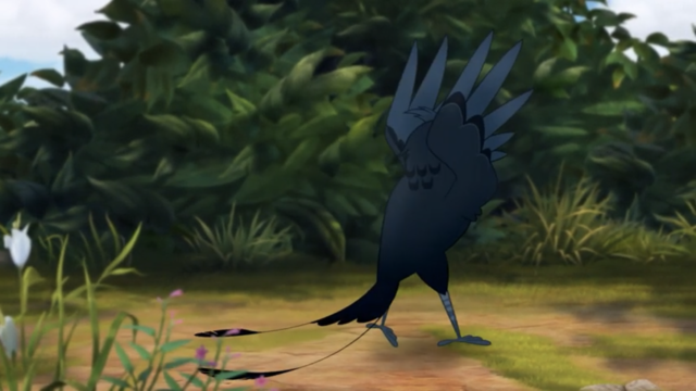 File:The-call-of-the-drongo (214).png