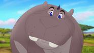 Follow-that-hippo (281)