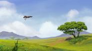 Ono-the-tickbird (302)