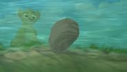 Baboons (279)