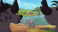 Follow-that-hippo (296)