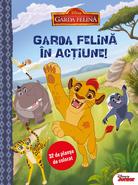 Romanian-book