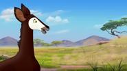 The-imaginary-okapi (359)