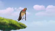 Ono-the-tickbird (260)