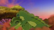 Let-sleeping-crocs-lie (293)