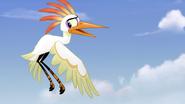 Ono-the-tickbird (309)