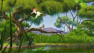 Ono-the-tickbird (370)