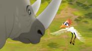Ono-the-tickbird (122)