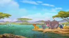 Follow-that-hippo (367)