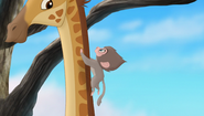 Baboons (253)