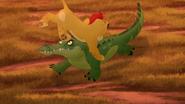 Let-sleeping-crocs-lie (342)