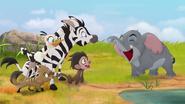 Follow-that-hippo (369)
