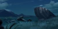 Aardvark Dens