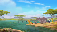 Follow-that-hippo (365)