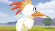 Ono-the-tickbird (278)