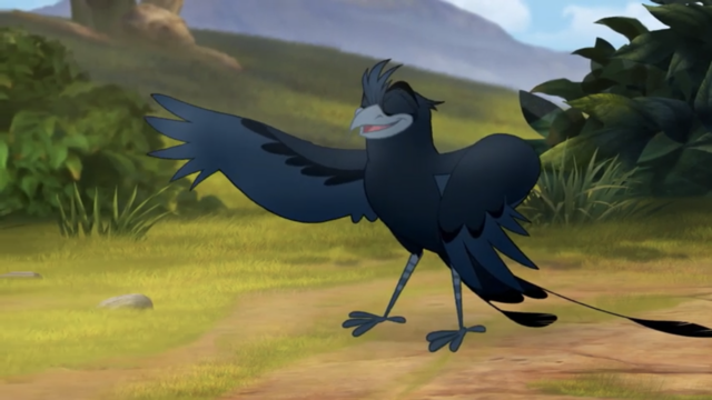 File:The-call-of-the-drongo (136).png