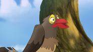 Ono-the-tickbird (418)